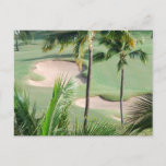 Golf Course in Tropics Postcard