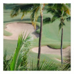 Golf Course in Tropics Poster