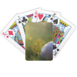 Golf on a Sunny Day Bicycle Playing Cards