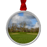 Let's Play Golf Metal Ornament
