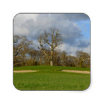 Let's Play Golf Square Sticker